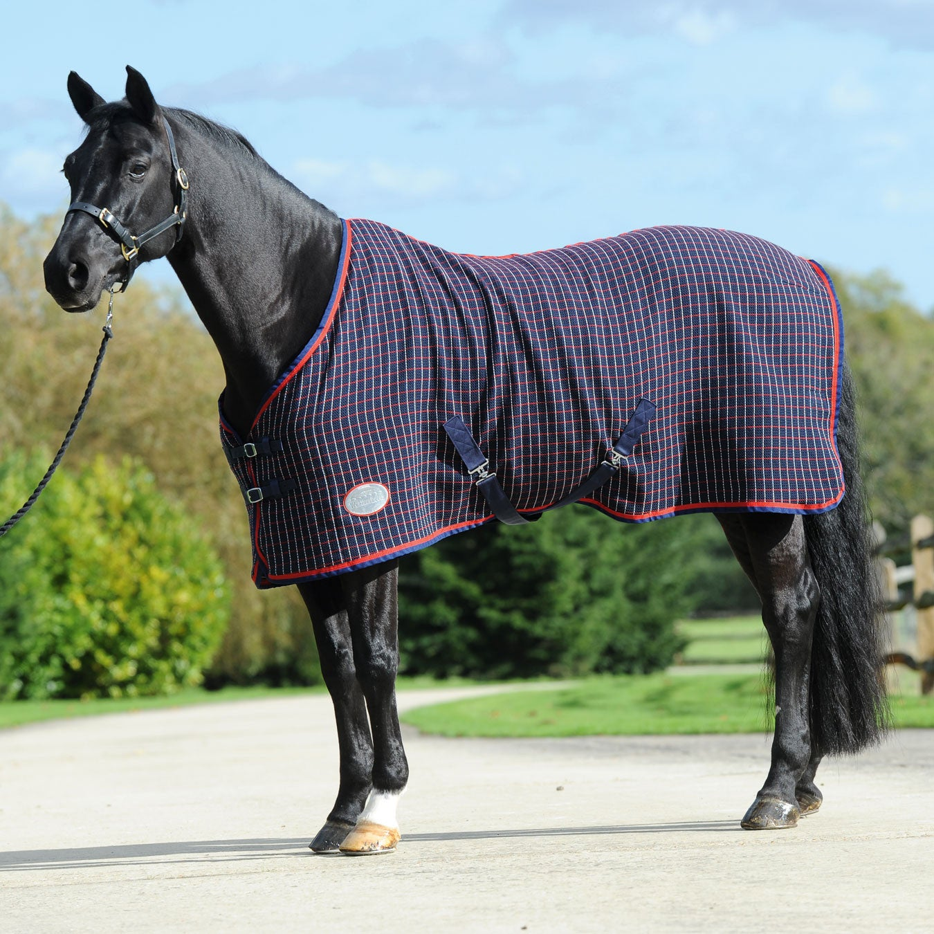 Details About Weatherbeeta Waffle Standard Neck Uni Horse Rug Cooler Navy Red White