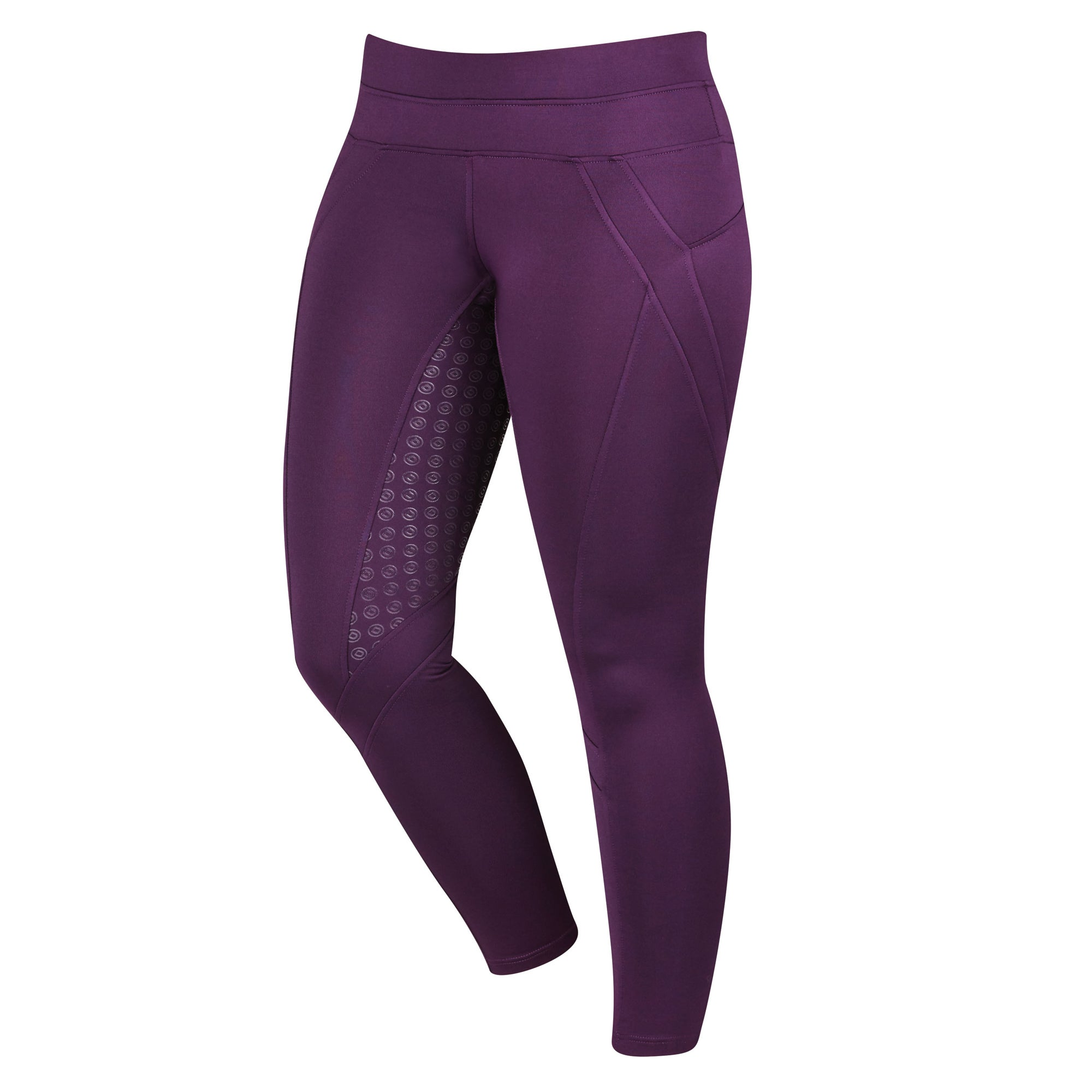 3a0e53503d7f8 Dublin Performance Thermal Active Womens Riding Tights Purple All Sizes