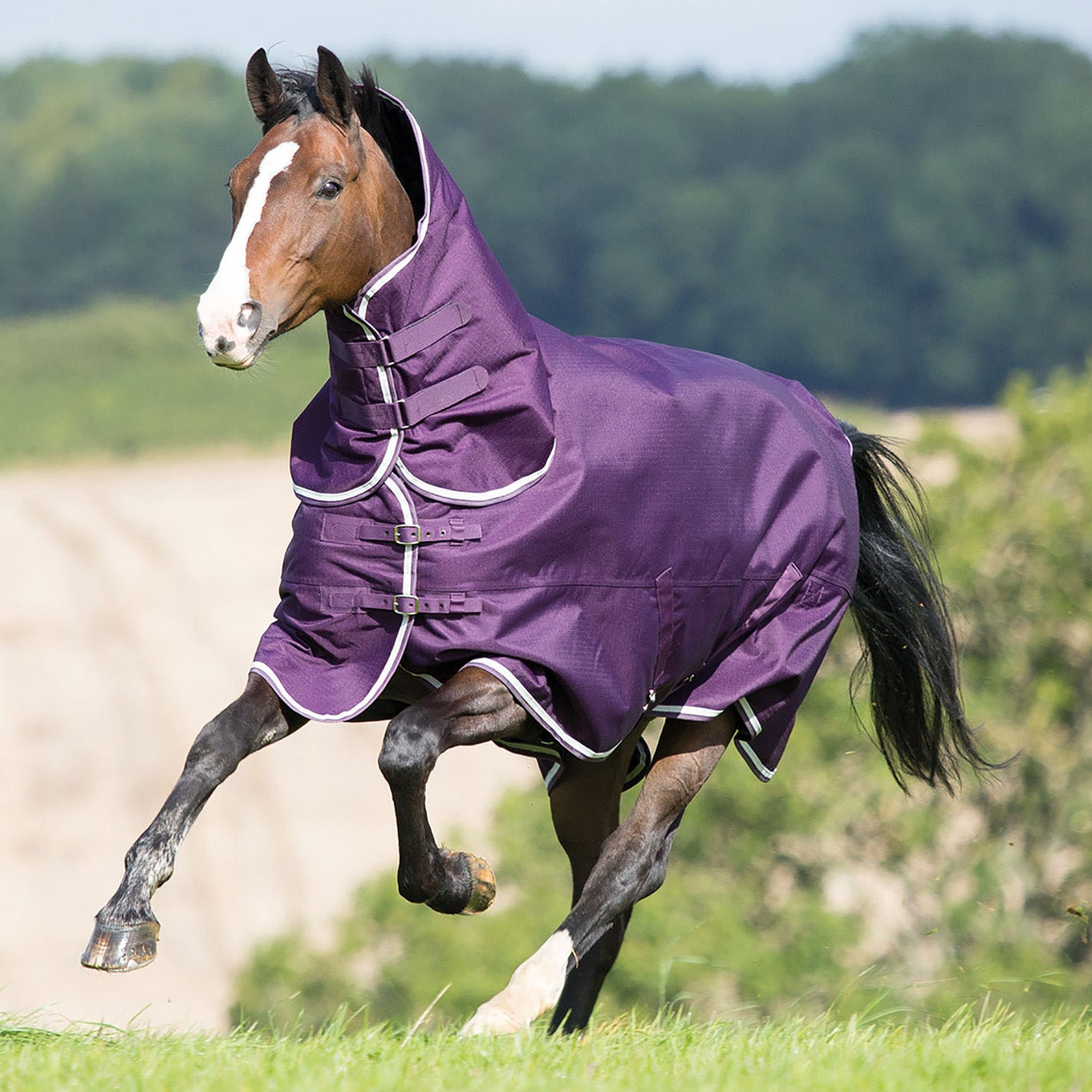 Shires Tempest Plus 200g Combo Turnout Rug White Purple All Sizes