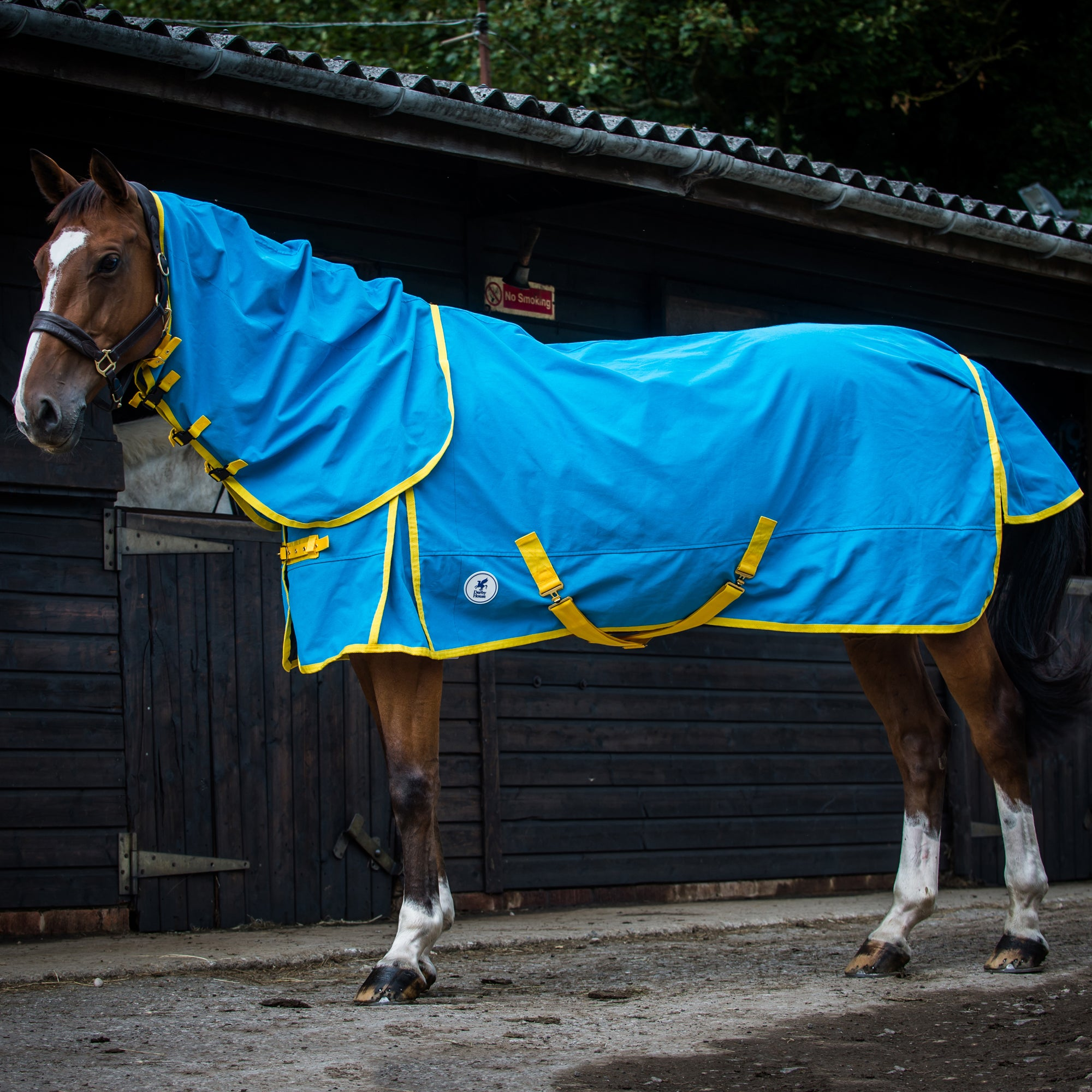 Details About Derby House Pro Cotton Combo Uni Horse Rug Sheet Blue Jewel Freesia