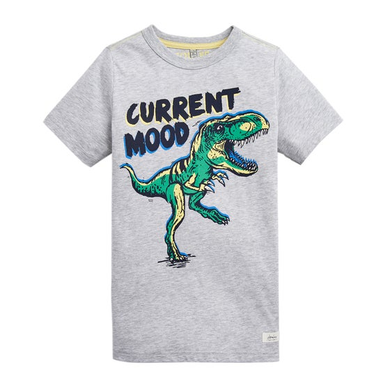 28d7822f Boys T-Shirts   Free Delivery options available at Surfdome