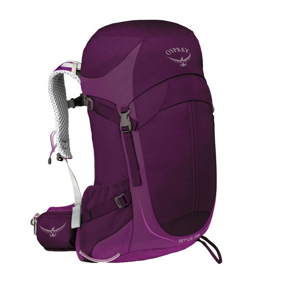 2fbcd0969 Women's Backpacks & Rucksacks | Free Delivery* at Surfdome