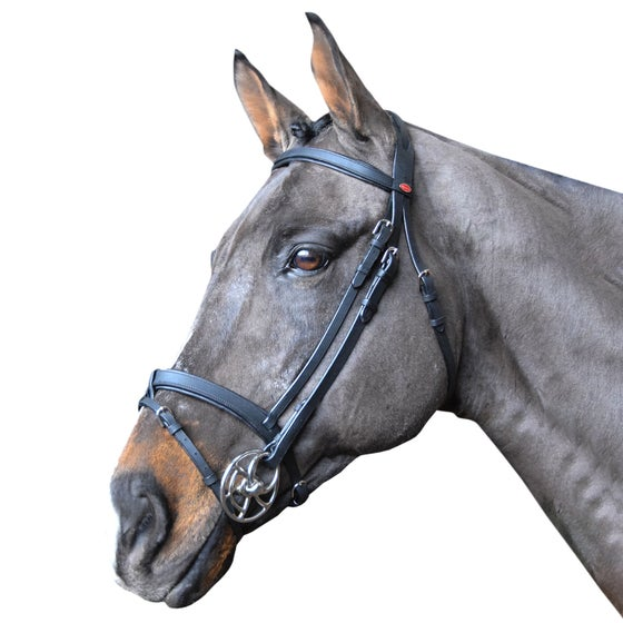 Horse Bridles from Rideaway