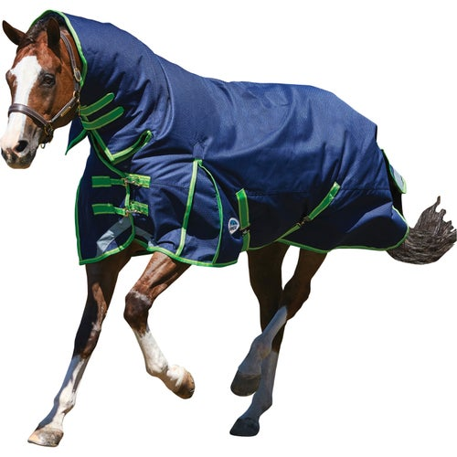 Weatherbeeta Comfitec Plus Dynamic Medium Lite Combo Turnout Rug