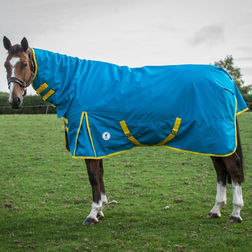 Blue Jewel Freesia Derby House Pro Medium Combo Turnout Rug