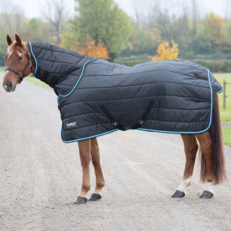 Shires Tempest 200g Neck and Stable Rug