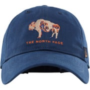 Gorro North Face Canvas Work Ball