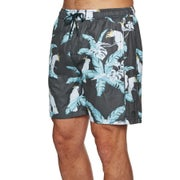 No News Terrestrial Beach Walk Shorts