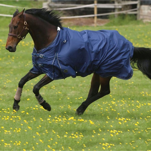 Navy And Beige Mark Todd Lightweight Turnout Rug