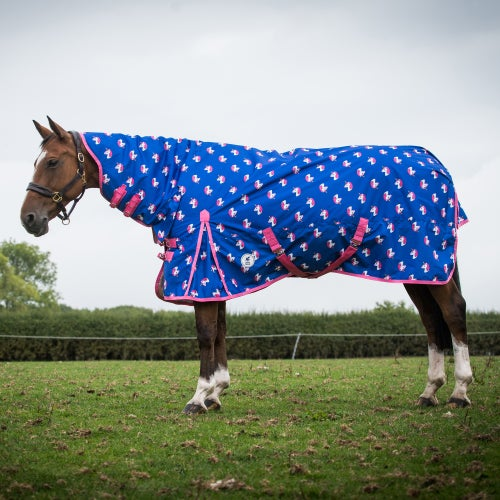 Horse Turnout Rugs From Ride Away