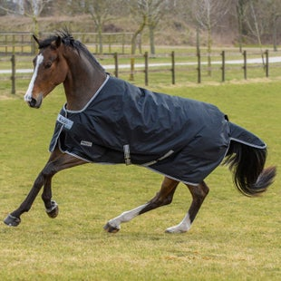 Bucas Anniversary 150 Stay Dry Turnout Rug Black