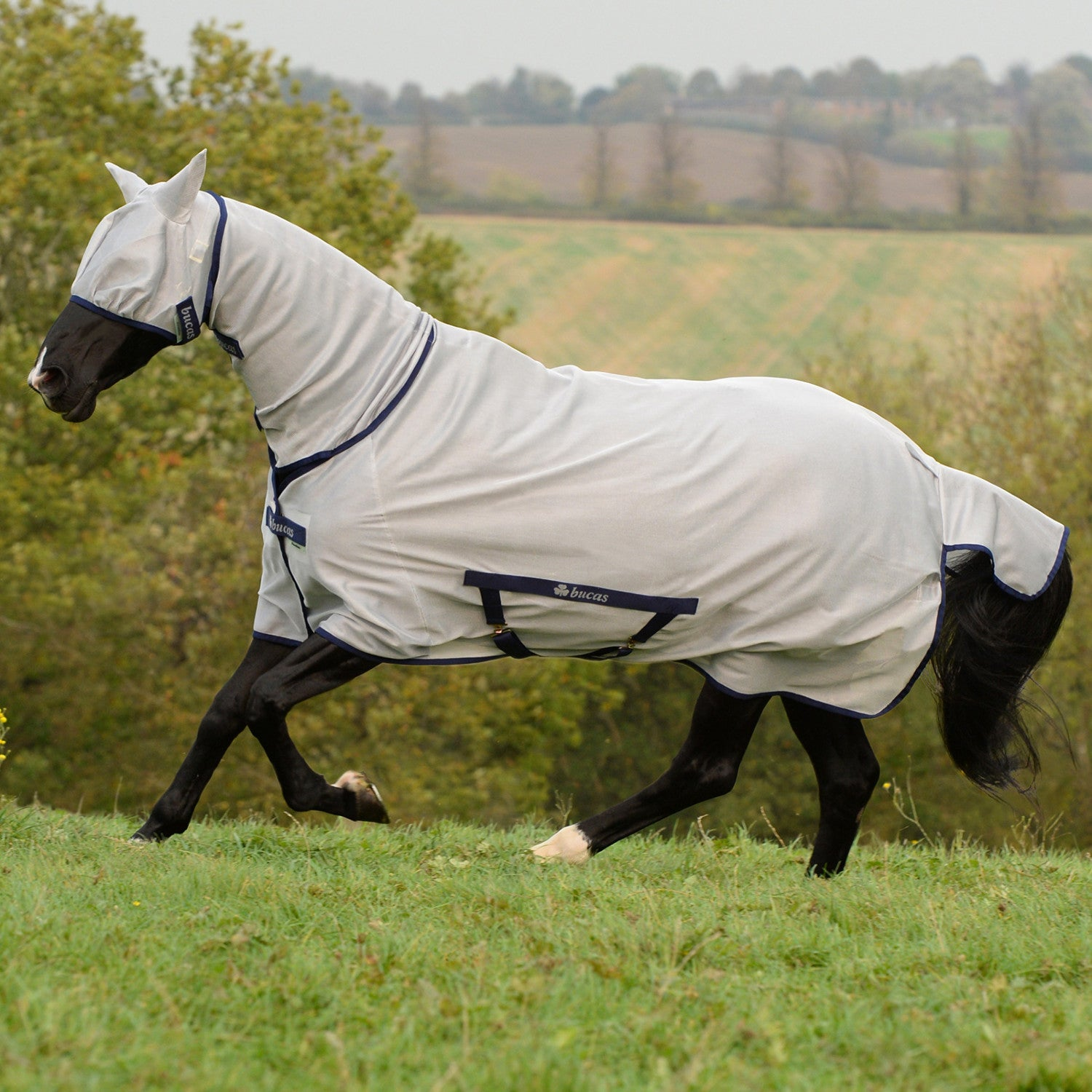 Manta antimoscas Bucas Freedom Pony Full Neck