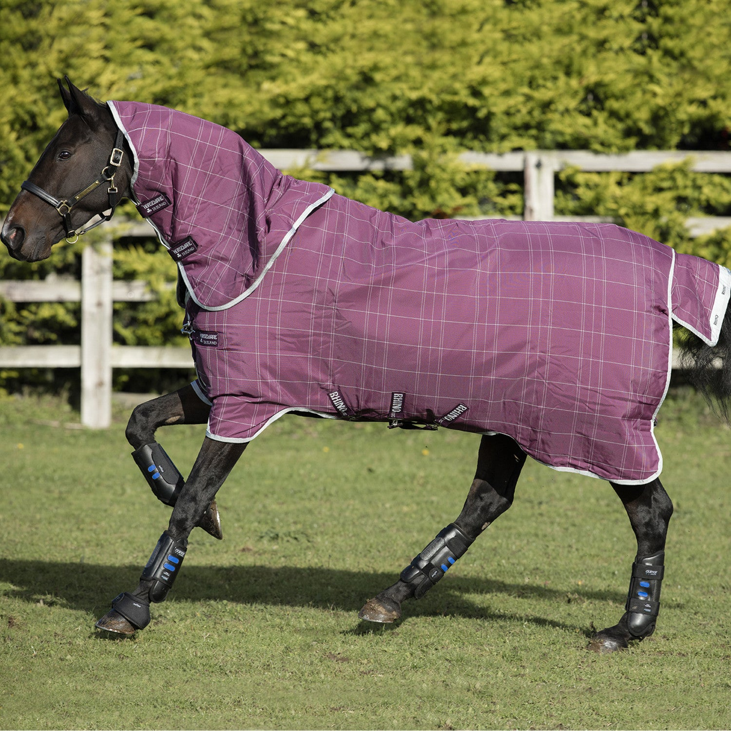 Rhino Plus with Vari Layer Heavy Turnout Rug