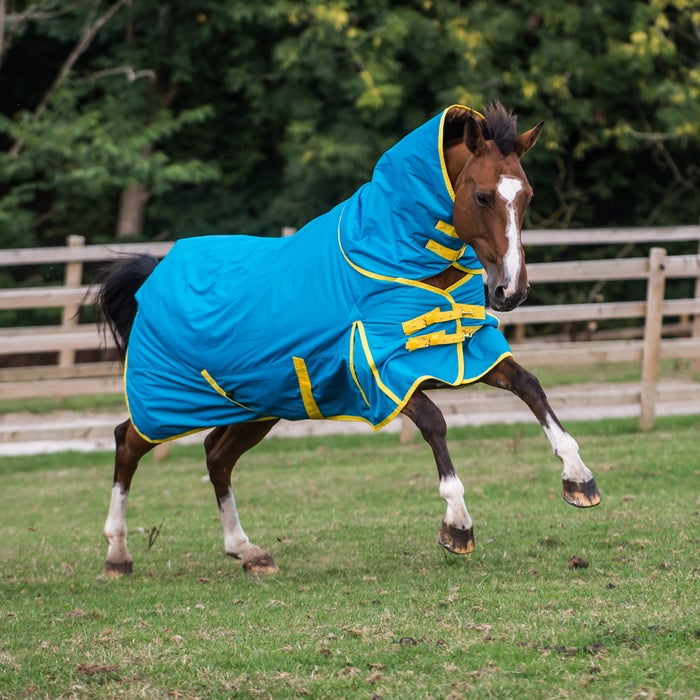 Derby House Pro Detach A Neck Medium Turnout Rug From Rideaway