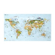 Surf Accessory Awesome Maps World Surf Map