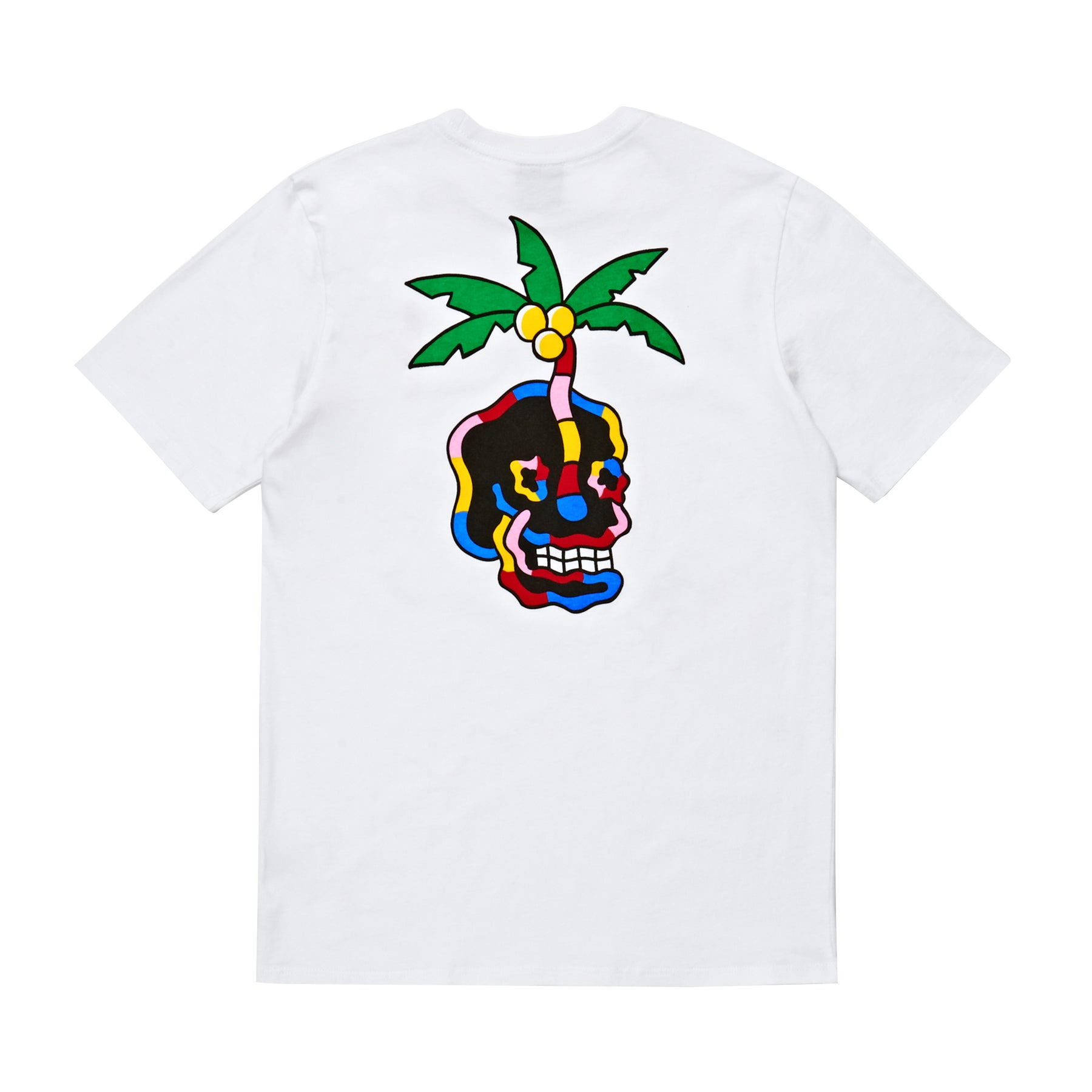 8ac4a1bd4eb2 SWELL Desciples Tee Boys Short Sleeve T-Shirt available from Surfdome