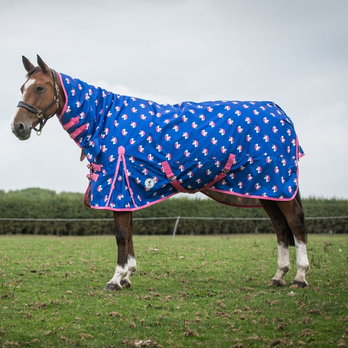 Derby House Pro Unicorn Lightweight Combo Turnout Rug From