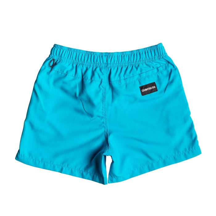 5b041031c1 Quiksilver Everyday 13in Boys Swim Shorts available from Surfdome